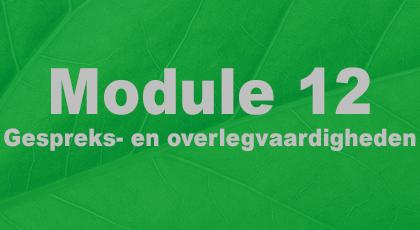 Module 12 - nog niet beschikbaar